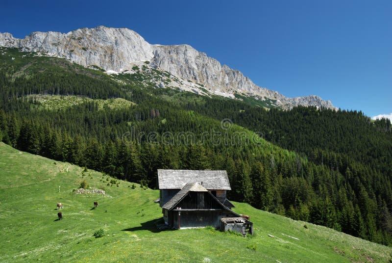 Alojamento de caça nas montanhas fotos de stock royalty free