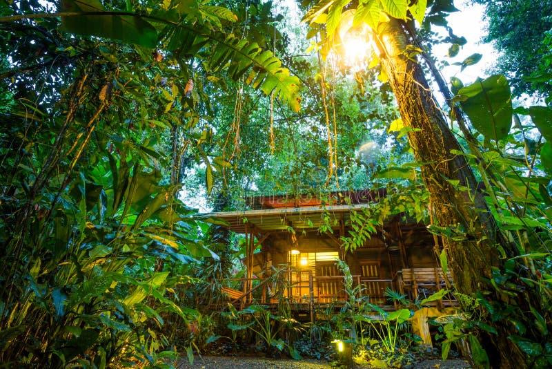 Alojamento de Eco em Puerto Viejo, Costa Rica imagens de stock royalty free
