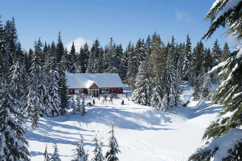 Alojamento de Hollyburn na montanha de Cypress imagem de stock royalty free