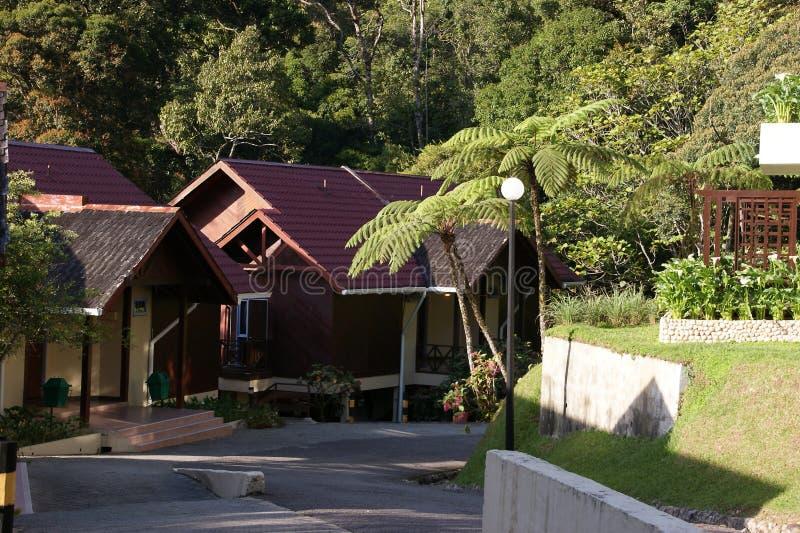 Alojamento do Nepenthes no Monte Kinabalu, parque de Kinabalu, Malásia, Bornéu fotos de stock