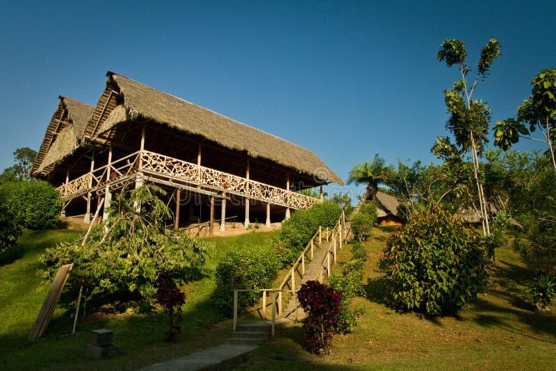 Alojamento ecológico na floresta úmida de amazon, Yasuni imagens de stock royalty free