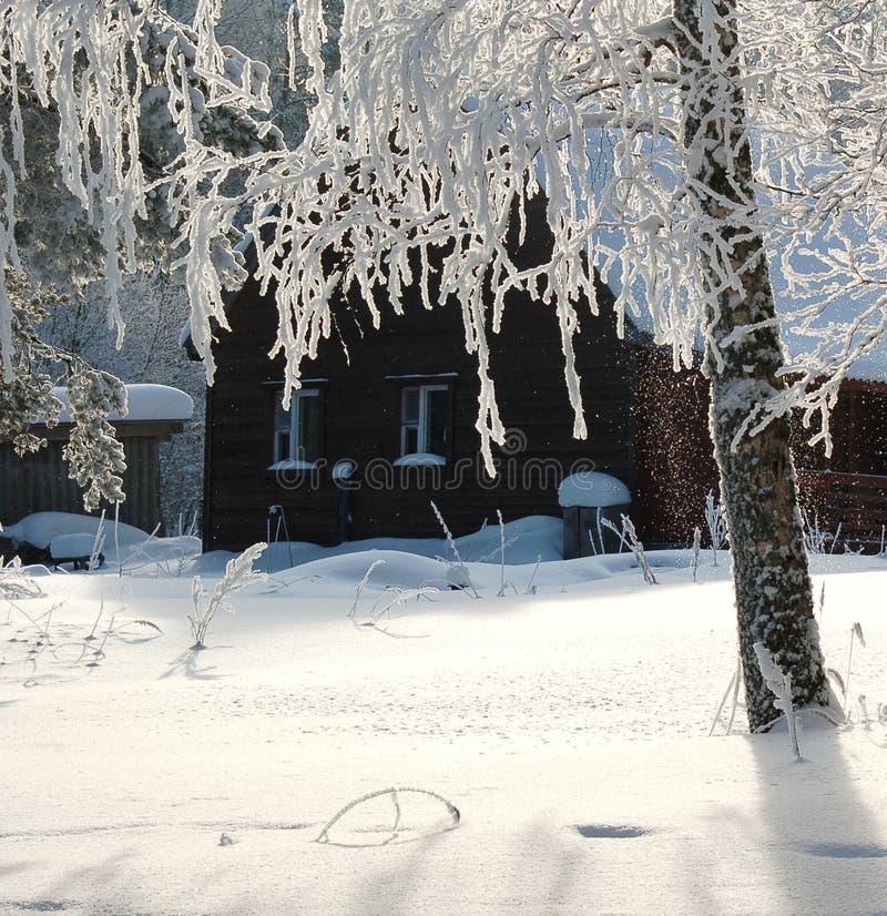 Alojamento nevado na floresta do inverno fotos de stock royalty free