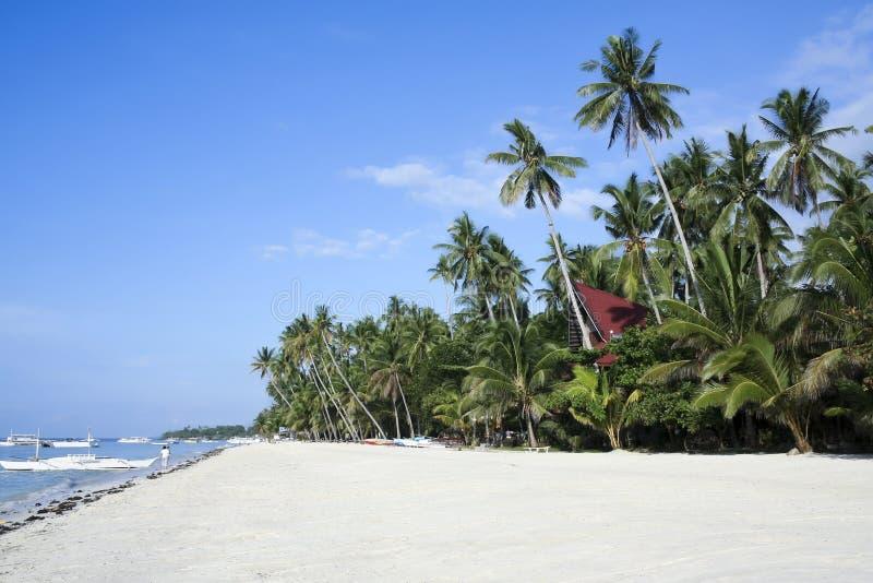 alona海滩bohol海岛菲律宾 免版税图库摄影