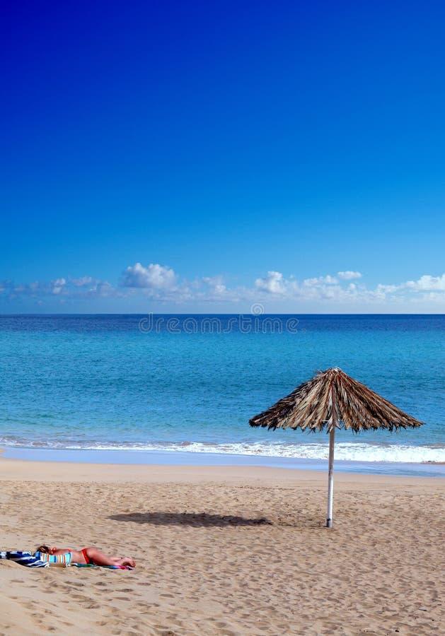 Download Alone stock image. Image of ocean, women, toes, coastline - 84137