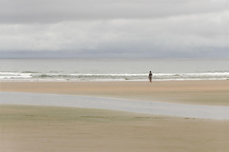 Download Alone On The Beach Royalty Free Stock Photography - Image: 33644447