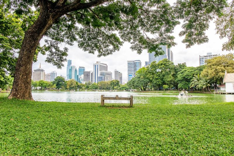 Alone bench or chair at the public park call Lumpini Park in the Thai capital`s city centre Bangkok Thailand. Alone bench or chair at the public park call royalty free stock images