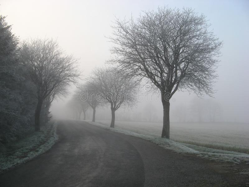 Alone, Cold, Countryside, Fog, stock photography