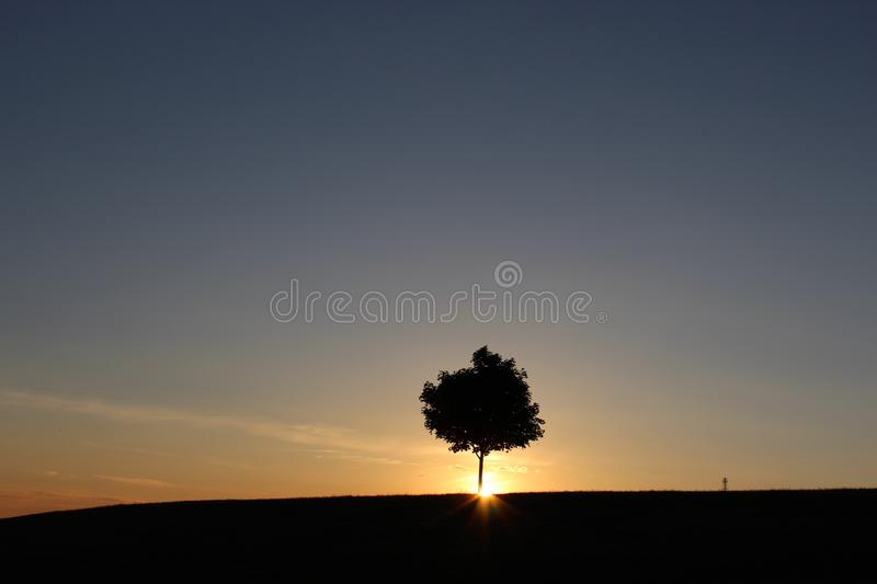 Alone. Delighting in yourself and dancing in your aloneness royalty free stock images