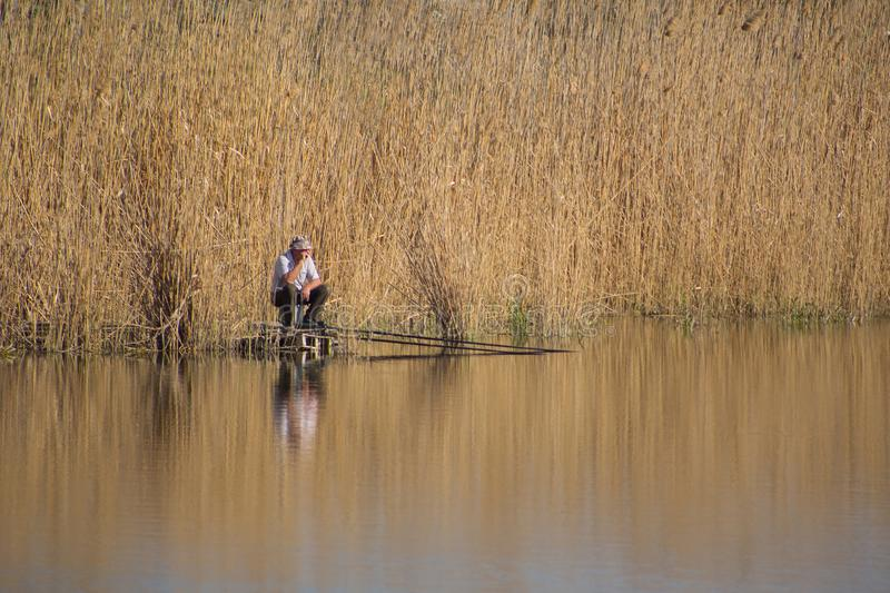 Alone fisherman with fishing rod sits in reeds by lake and waits for fish bite, he is reflected on surface of pond stock image