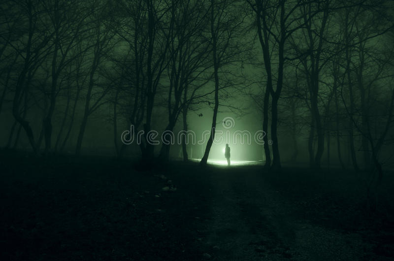 Download Alone Girl With The Light In The Forest At Night, Or Blue Toned  Stock