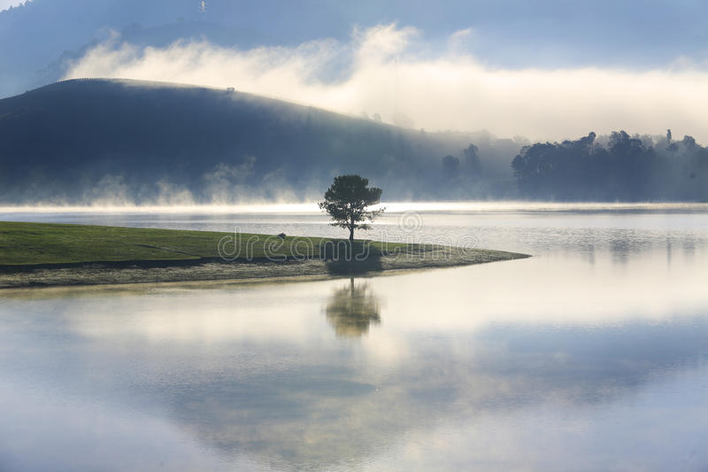 Alone in lake. Alone in Dankia lake, Dalat, Vietnam royalty free stock photography