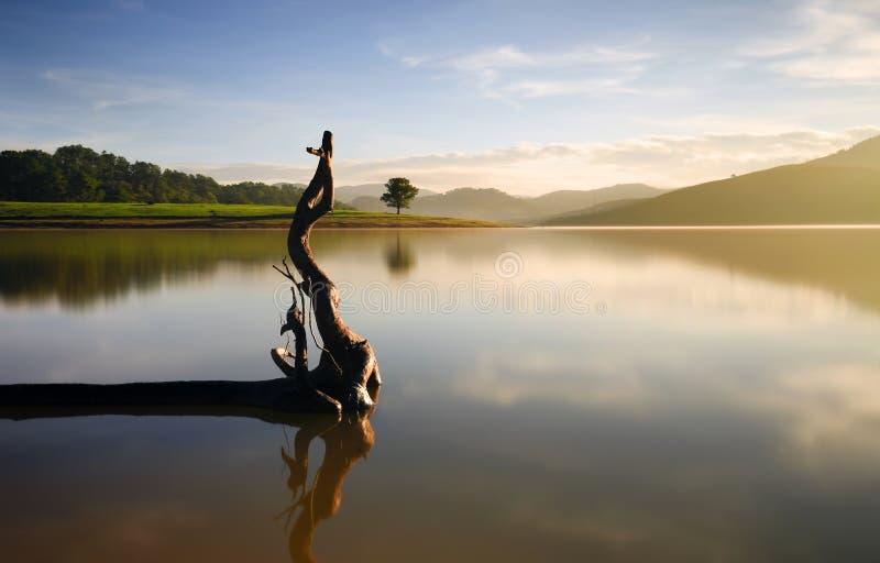 Alone in lake. Alone in Dankia lake, Dalat, Vietnam stock photo