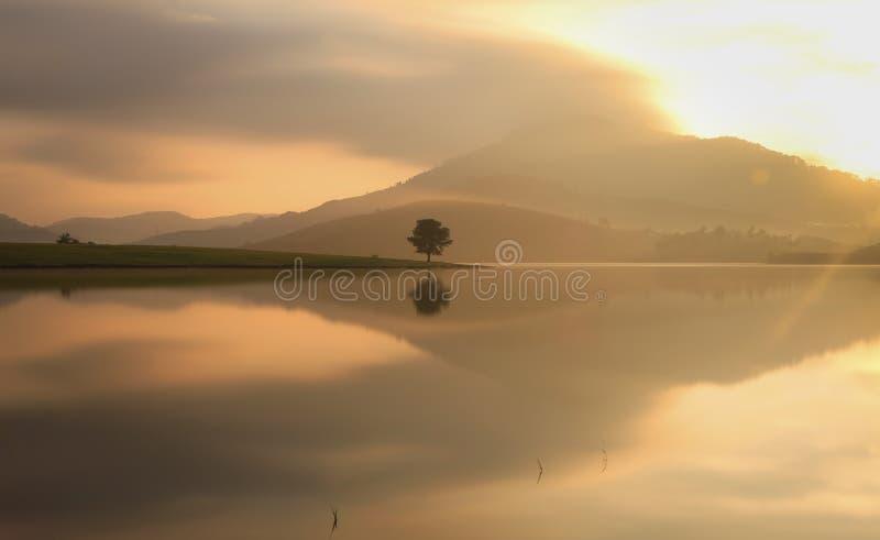 Alone in lake. Alone in Dankia lake, Dalat, Vietnam royalty free stock image