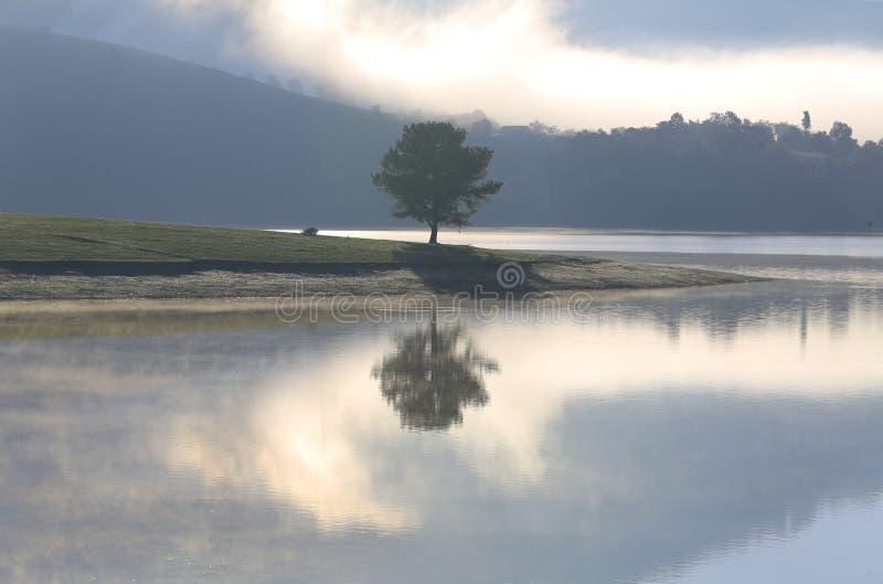 Alone in lake. Alone in Dankia lake, Dalat, Vietnam royalty free stock photo