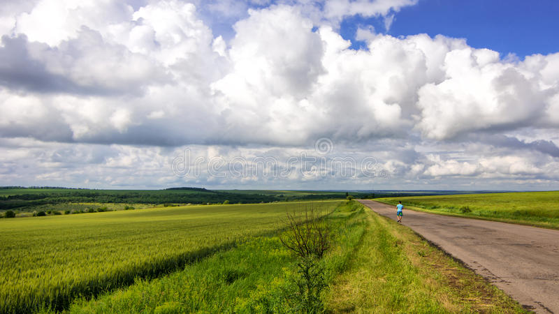 Alone man on country road viewing in wheat field with clouds stormy skies. Alone man on country road viewing in wheat field with clouds skies royalty free stock images
