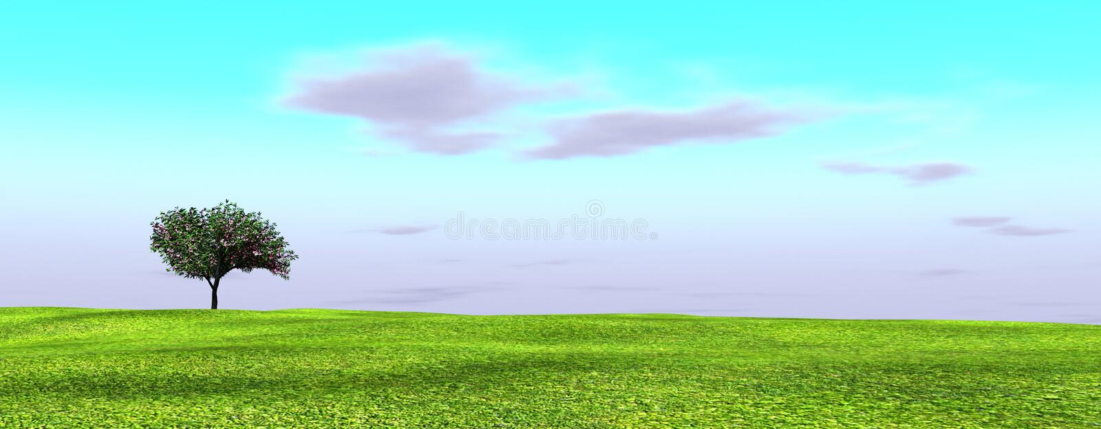 Alone Oleandre Royalty Free Stock Image