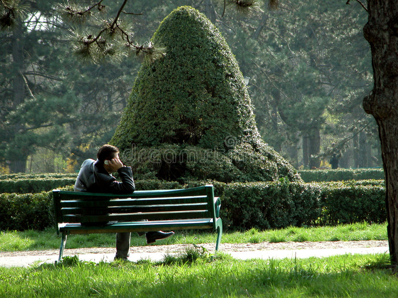 Download Alone in the park stock photo. Image of bench, vegetation - 1444