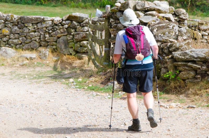 Alone pilgrim wearing a hat a backpack and a typical pilgrim scallop in Camino de Santiago stock images