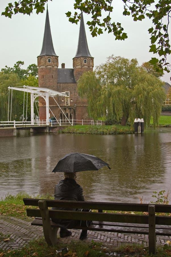 Download Alone in the rain stock photo. Image of mist, rain, dull - 1417068