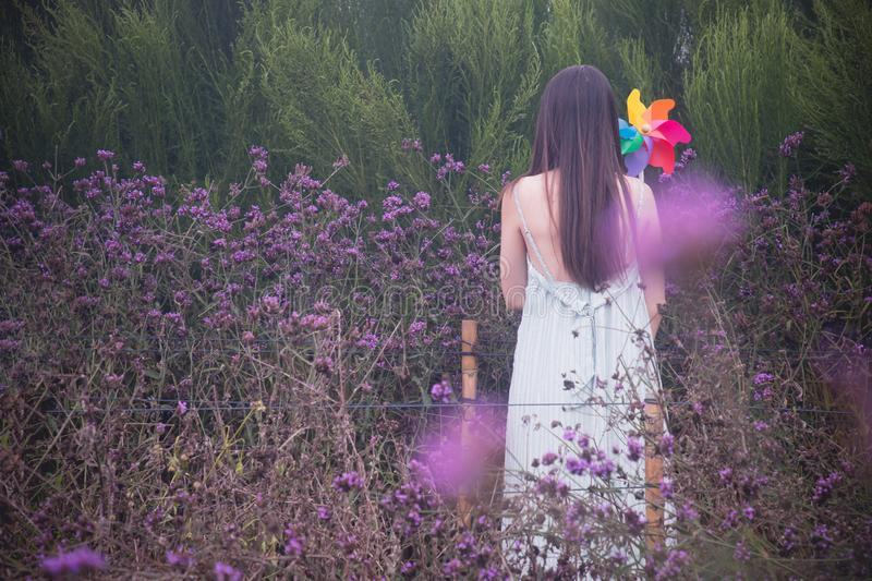 Alone woman holding rainbow windmills in verbena flower garden royalty free stock images