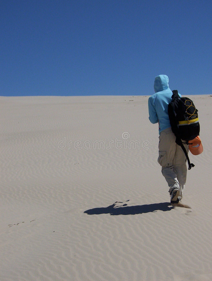 Free Alone_in_the_desert Royalty Free Stock Photo - 252705