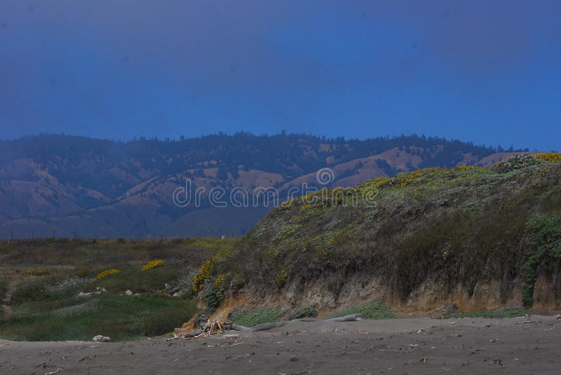 Along Highway One royalty free stock photos