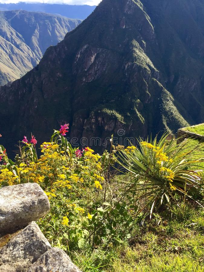 Along the Inca Trail royalty free stock images