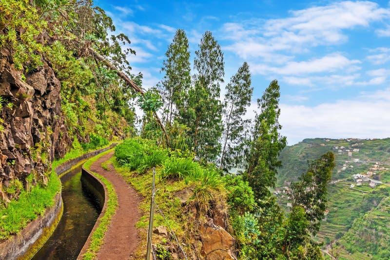 Along the Levada, Madeira royalty free stock image