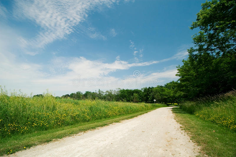 Download Along the path stock photo. Image of flower, dusty, road - 23434418