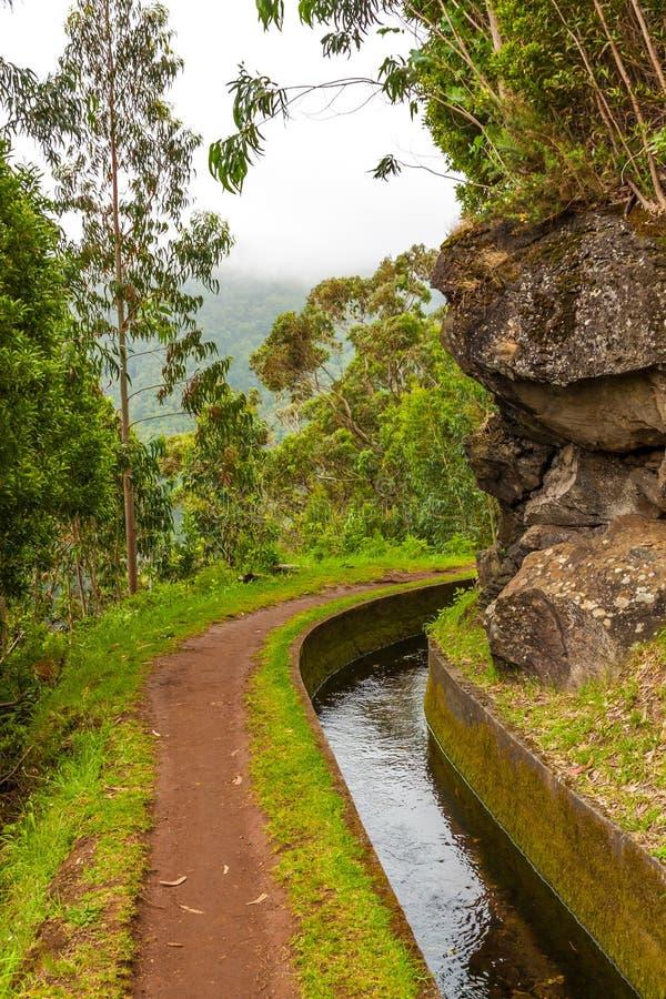 Free Along The Levada, Madeira Royalty Free Stock Photo - 31819125