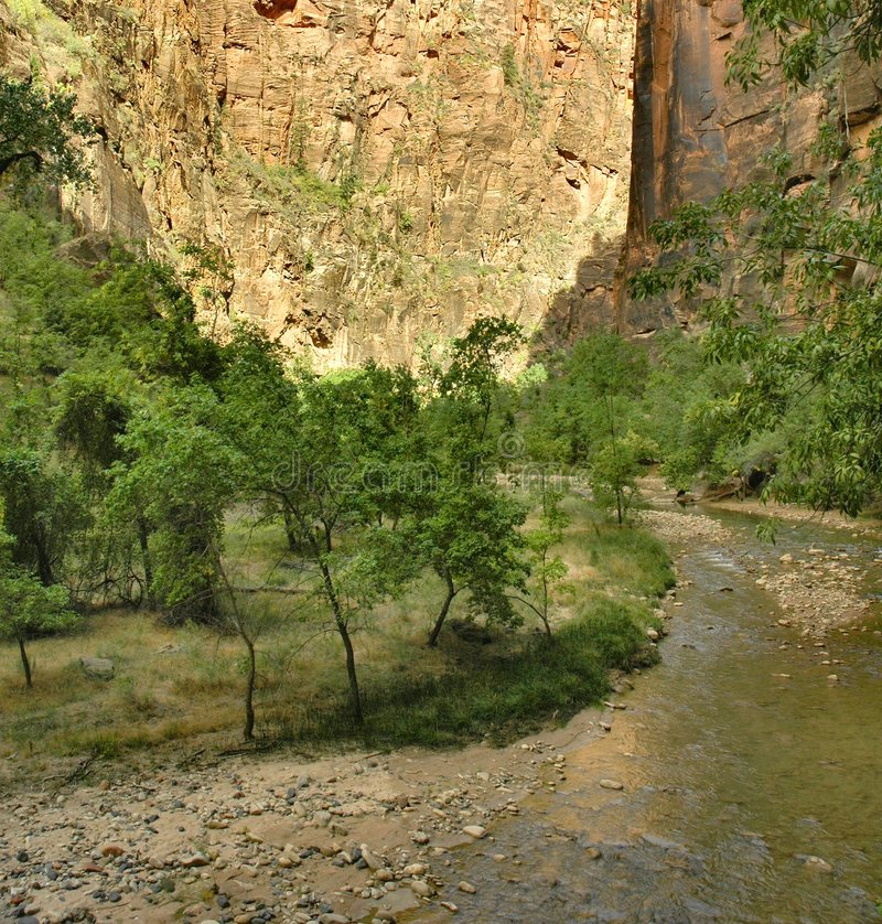 Download Along The Virgin River, Zion Stock Image - Image: 8737685