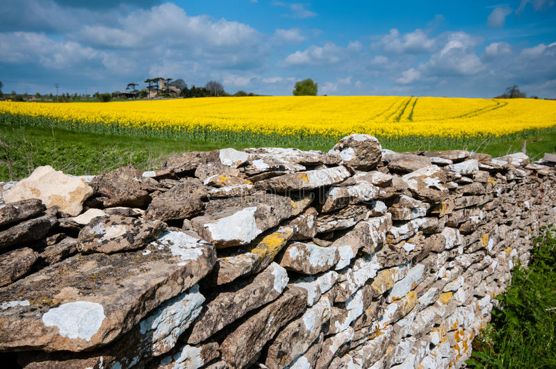 Download Along the Wall stock photo. Image of openspaces, wall - 25934600