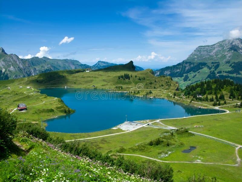 Alp lake in Switzerland stock photos