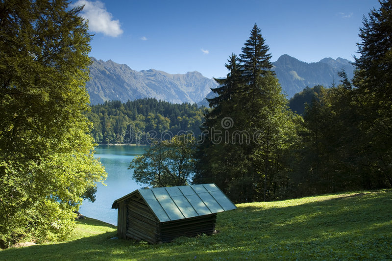 Alp at a mountain lake in Bavaria. An alp at the mountain lake Freibergsee near by Oberstdorf in Bavaria royalty free stock images