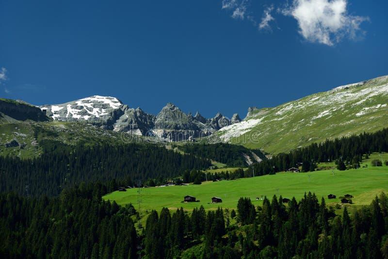 Alp Nagens, Graubunden, Switzerland royalty free stock photo