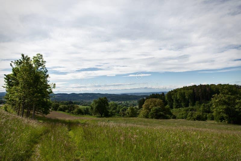 Alp view near lake constance