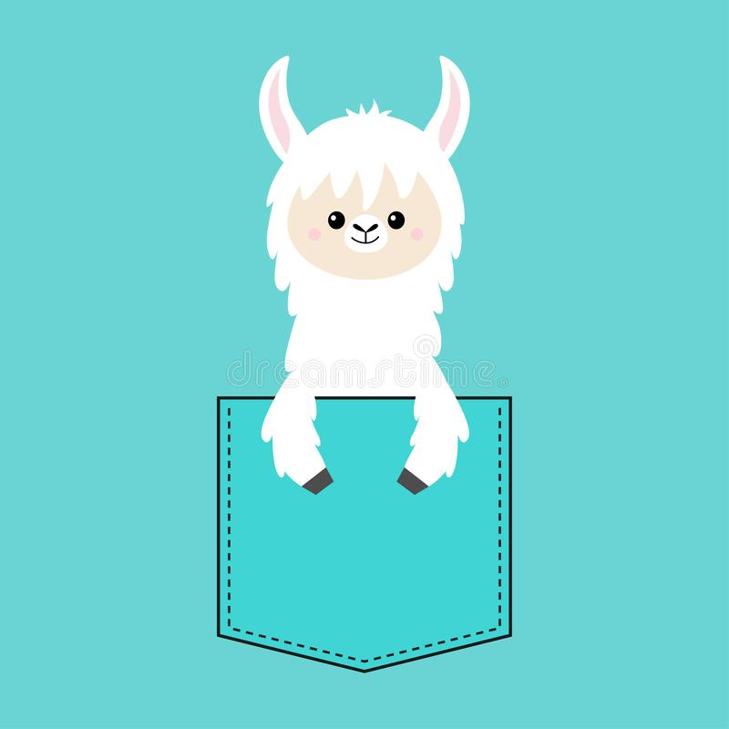 Alpaca llama face and hand in the pocket. T-shirt design. Cute cartoon funny character. Kawaii animal. Love Greeting card. Flat. Design style. Blue background royalty free illustration