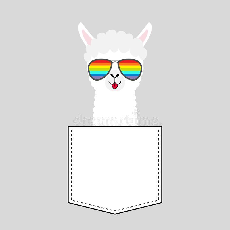 Alpaca llama face head in the pocket. Rainbow glasses. Cute cartoon animals. Kawaii character. Dash line. White and black color. T. Shirt design. Baby gray royalty free illustration