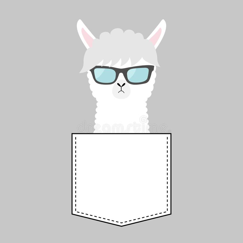 Alpaca llama face head in the pocket. Sun glasses. Cute cartoon animals. Kawaii character. Dash line. White and black color. T-. Shirt design. Baby gray stock illustration