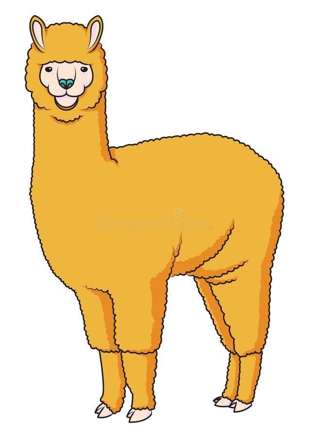 Alpaca Llama Vector Illustration Stock Vector ...