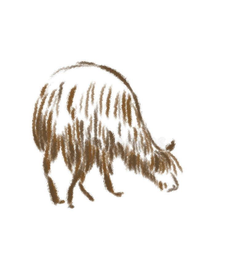 Alpaca no marrom no branco ilustração do vetor