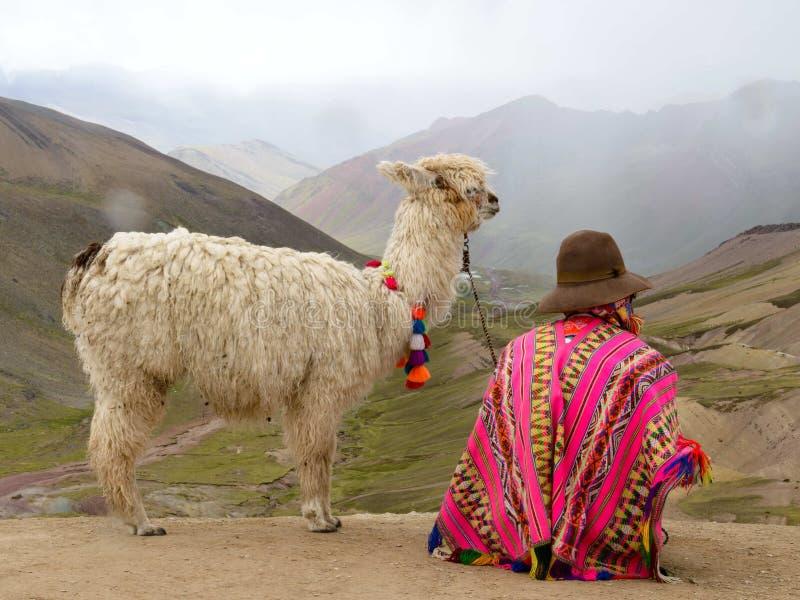 Alpaka und Handler in Peruvien lizenzfreies stockbild