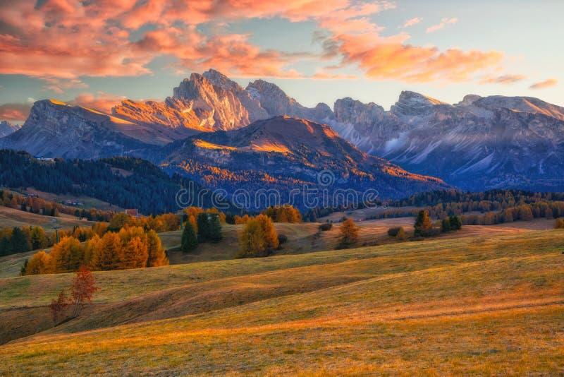 Alpe在日出的di Siusi惊人的秋天风景  庄严山和五颜六色的天空在背景,白云岩,意大利中 免版税库存照片
