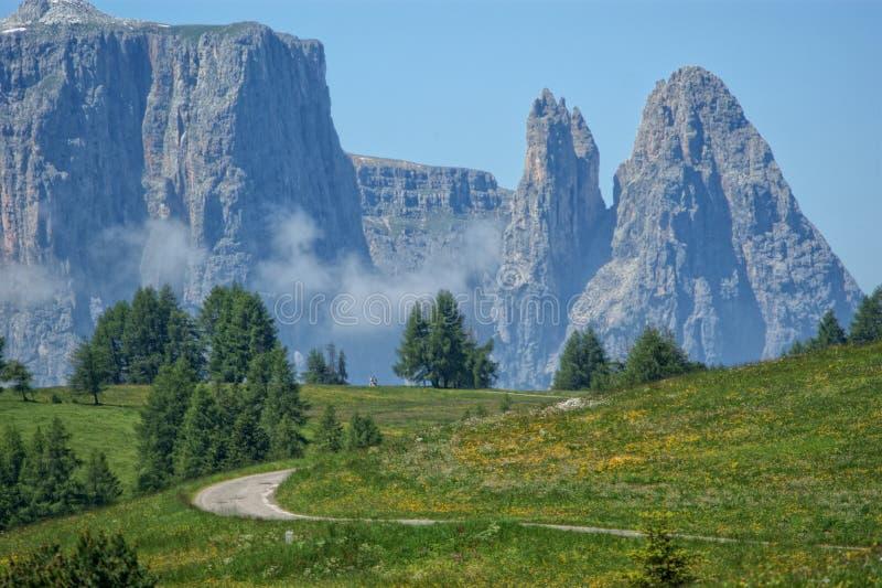 Alpe Di Siusi royalty-vrije stock foto