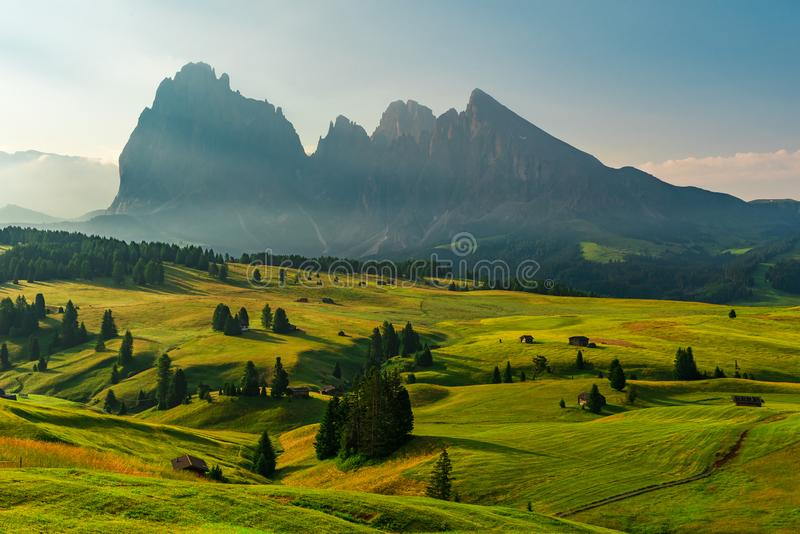 Alpe di Siusi or Seiser Alm with Sassolungo or Langkofel mountain group in background at sunrise in Italy royalty free stock photography