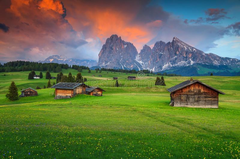 Seiser Alm with Langkofel group in background at sunset, Italy. Alpe di Siusi - Seiser Alm with Sassolungo - Langkofel mountain group in background at sunset stock photography