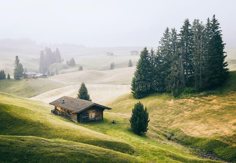 Alpe di Siusi Seisser Alm fotografia de stock royalty free