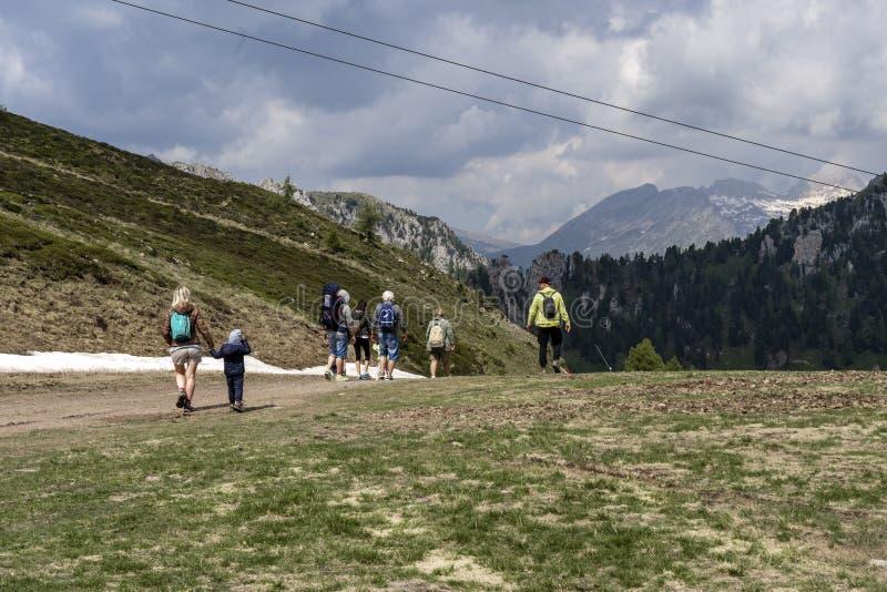 Alpe Lusia, доломиты, Альп, Италия Красивый горный вид Ландшафт горы лета в val di Fassa, итальянских доломитах стоковые фото