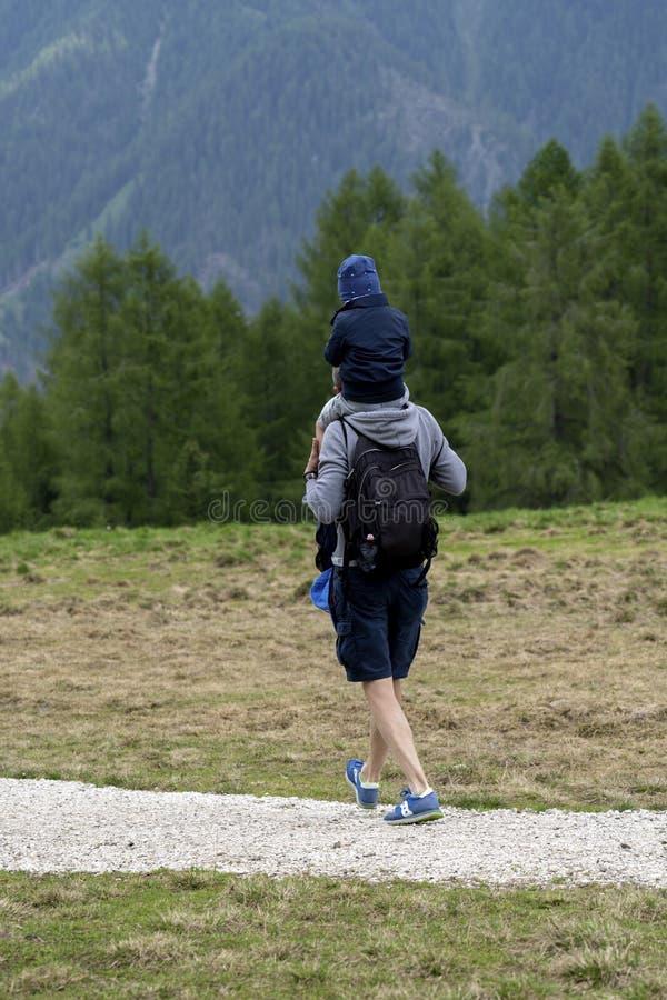 Alpe Lusia, dolomia, alpi, Italia Bello Mountain View Paesaggio della montagna di estate in di Fassa val, dolomia italiane immagine stock