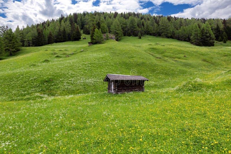 Alpe verte d'été avec un cottage dans les Alpes de l'Autriche photographie stock